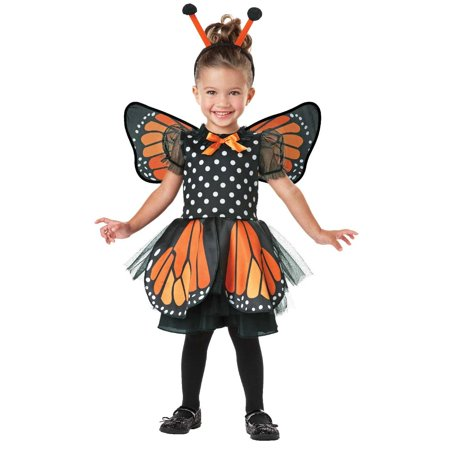 Monarch Butterfly Infant/Toddler Costume - 2T-4T - Butterfly Toddler Costume
