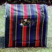 "Kittywalk Clubhouse Cat Cage, Striped, 24"" x 18"" x 24"""