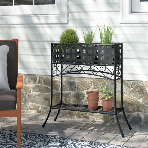 Darby Home Co Abbottsmoor Plant Stand