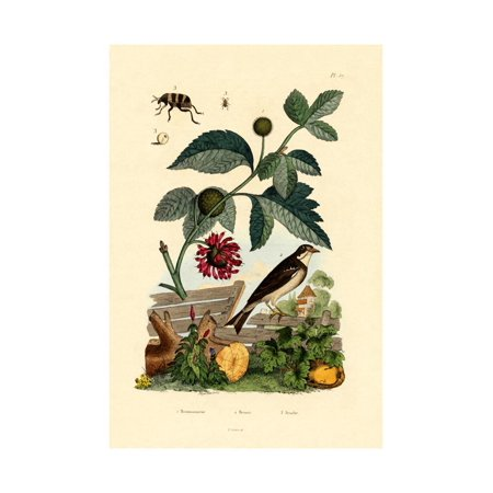 Paper Mulberry, 1833-39 Print Wall Art Art Stitched Mulberry Paper