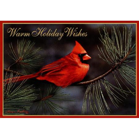 LPG Greetings Cardinal and Gold Foil Pine Needles: Karen Latham Christmas Card