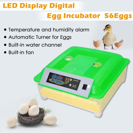 Yescom Automatic Digital 56 Eggs Incubator Hatcher Turning Temperature Control