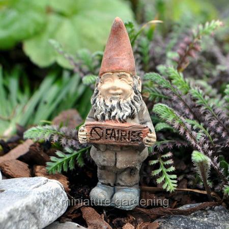 Wholesale Fairy Gardens Timmy the Gnome for Miniature Garden, Fairy Garden