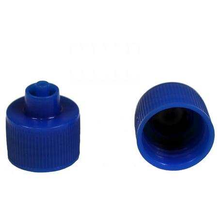 Small 2 Ounce Bottle - Creative Hobbies Luer Lock Bottle Cap, 20-410 Threads Fit 1, 2, 4 Ounce Bottles, Blue Plastic, Pack of 12