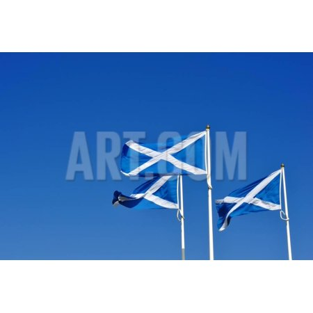 Three Scottish or Saltire Flags Blowing in the Wind Print Wall Art By StockCube