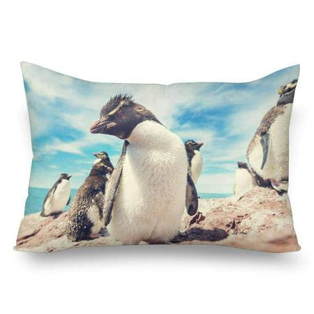 GCKG Penguins Blue Sky Pillow Cases Pillowcase 20x30 inches - image 4 de 4