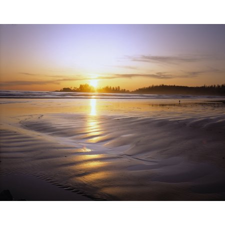 unset on Long Beach at low tide Pacific Rim National Park Vancouver Island British Columbia Canada Canvas Art - Panoramic Images (36 x 29) ()