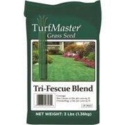 Lebanon Seaboard 28-08560 3 lbs. Grass Seed Tri Fescue