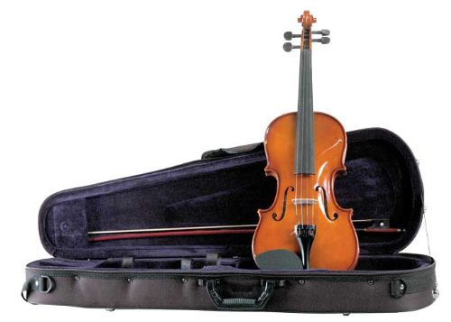Palatino VN-450-1 4 Allegro Violin Outfit, 1 4 Size Multi-Colored by Palatino