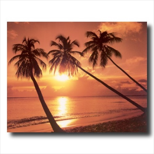 Hawaiian Ocean Palm Tree Beach Wall Picture Art Print