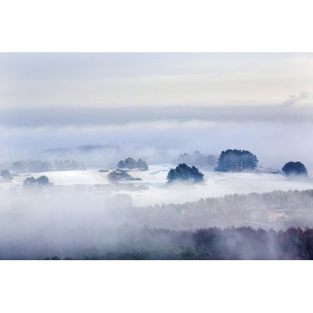 Winter Fog Clearing to Reveal Frost and Snow across the Delamere Forest Landscape, Cheshire Print Wall Art By Garry Ridsdale ()
