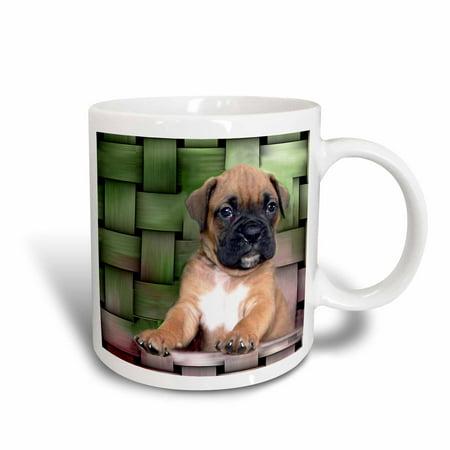Brindle Boxer Puppy (3dRose Brindle Boxer Puppy, Ceramic Mug, 15-ounce)