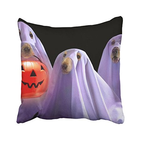 WinHome Happy Halloween Funny Dogs Ghost Pumpkin Lights Decorative Pillowcases With Hidden Zipper Decor Cushion Covers Two Sides 18x18 inches](Halloween Funny Cover Photo)