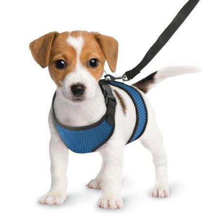 Comfy Hoodie Set - Comfy & Soft Lightweight Dog Harness Vest and Leash Set, No-Slip No Pull No Choking Design, Large, Blue