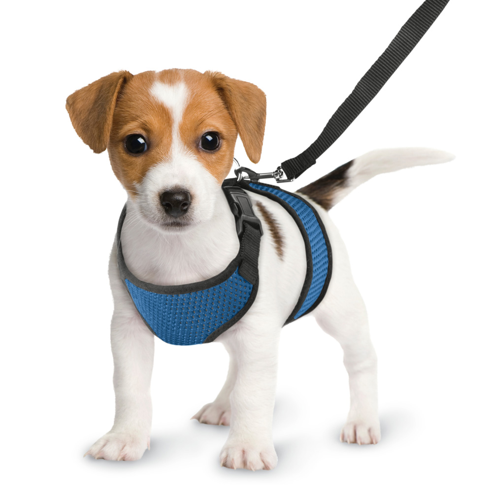 Comfy & Soft Lightweight Dog Harness Vest and Leash Set, No-Slip No Pull No Choking Design