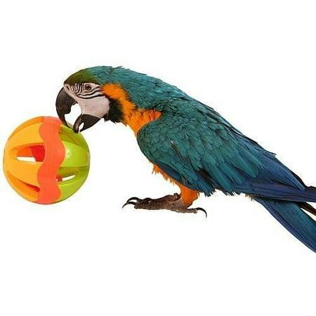 2008 Huge 5-Inch Plastic Ball Bird - Hue Ball