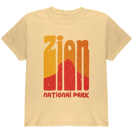 National Park Retro 70s Color Bars Zion Youth T Shirt](70s Items)