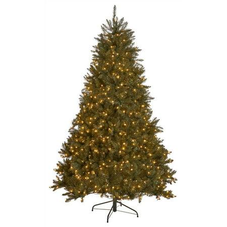 9 ft. Dunhill Fir Pre-Lit Artificial Christmas Tree in (10 Ft Dunhill Fir Artificial Christmas Tree)