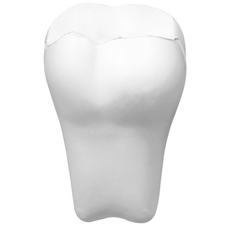 Stress Relief Squeezable Foam Tooth Set of 3