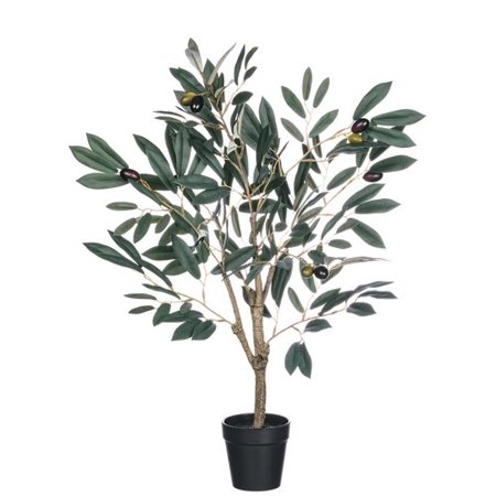 Fleur De Lis Living Olive Tree in Planter