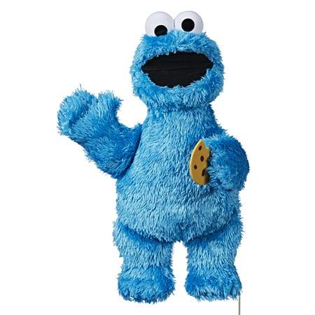 Street Luxury Plush (Playskool Friends Sesame Street Feed Me Cookie)