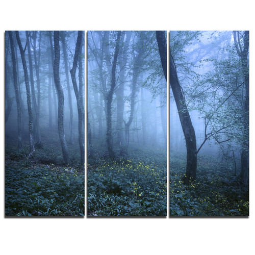 Design Art Trail Through Blue Fall Forest - 3 Piece Graphic Art on Wrapped Canvas Set