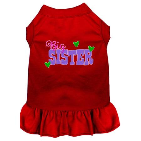 Big Sister Screen Print Dog Dress Red XXXL Big Dot Dress