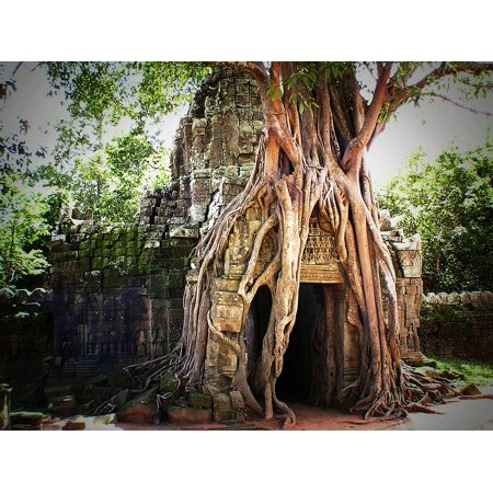 Laminated Poster Cambodia Jungle Angkor Asia Siem Reap Temple Poster Print 24 x 36