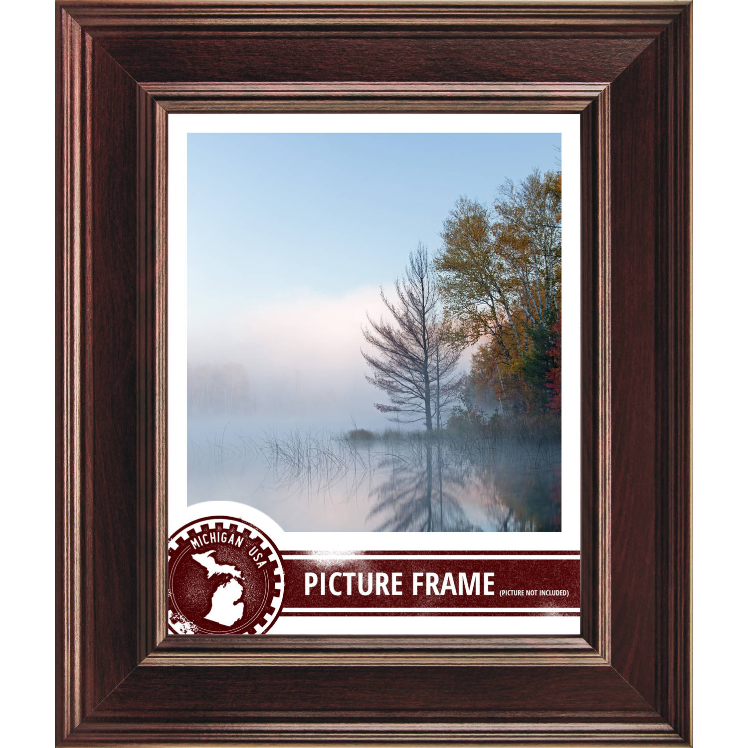 Craig Frames Inc. Craig Frames Contemporary Mahogany Red Picture Frame