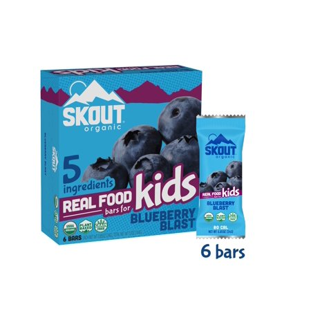 Skout Organic Kids Bars, Blueberry Blast, 6 bars, 0.85oz (Carbrite Bar Blueberry Cheesecake)