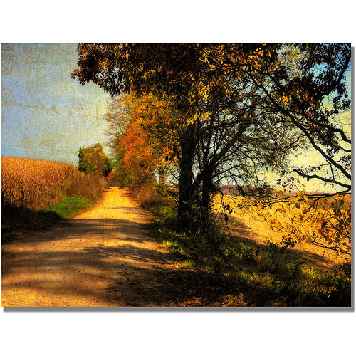 "Trademark Fine Art ""Follow Your Road"" Canvas Wall Art by Lois Bryan"