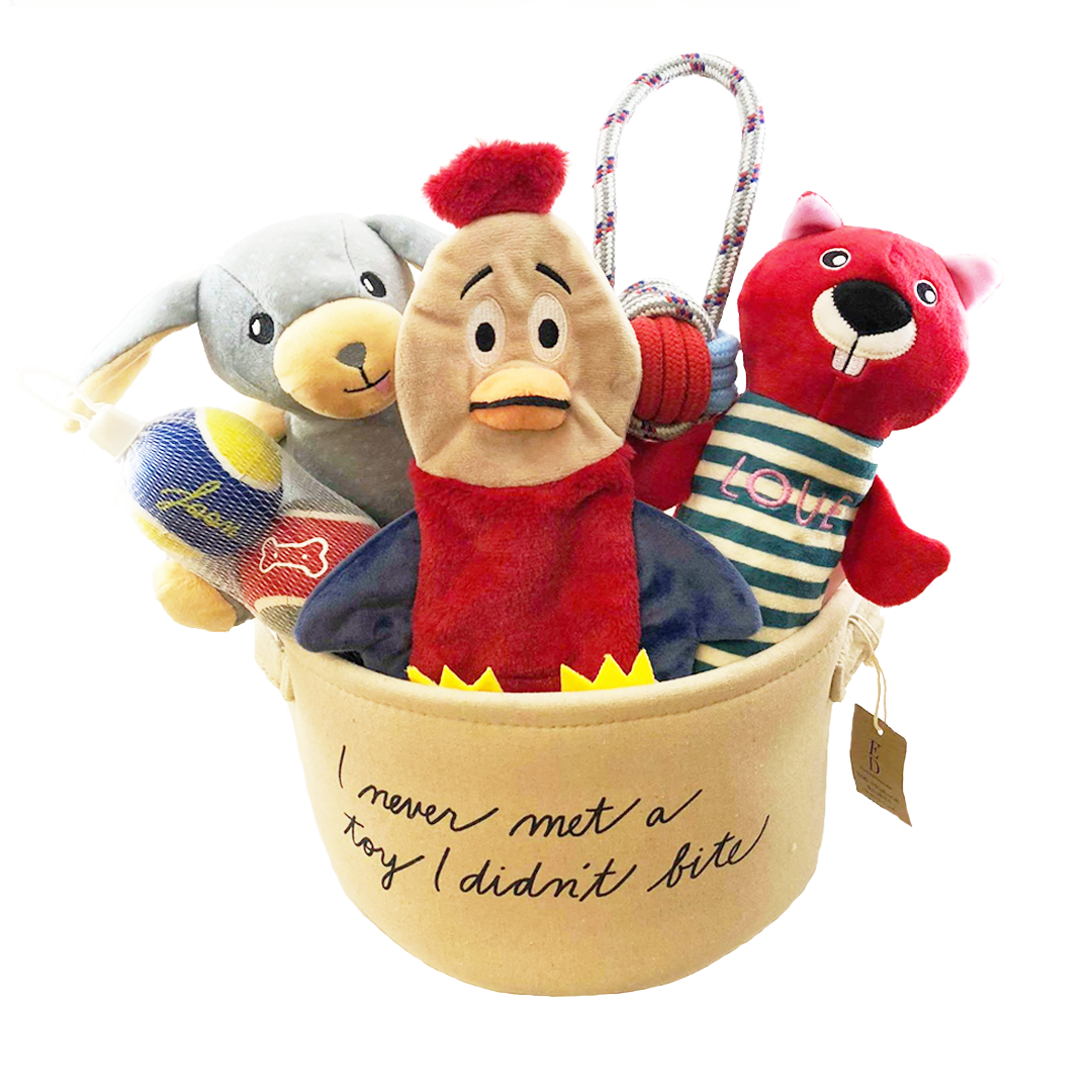 Ellen DeGeneres Dog Toys and Storage Bin (includes 7 toys) by iWorld