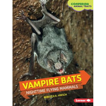 Bats Flying (Vampire Bats : Nighttime Flying)