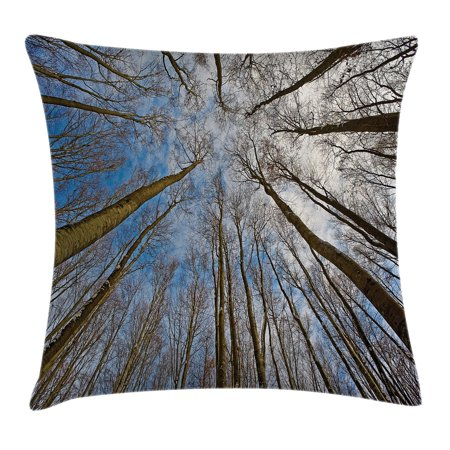 Forest Home Decor Throw Pillow Cushion Cover  Skyward Image Of Leafless Twiggy Tree Trunk Cloudy Morning Light Outdoor  Decorative Square Accent Pillow Case  20 X 20 Inches  Blue Brown  By Ambesonne