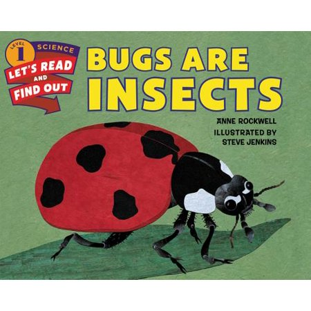Bugs Are Insects - Are Fireflies Insects