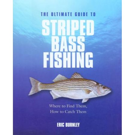 Ultimate Guide to Striped Bass Fishing : Where to Find Them, How to Catch Them