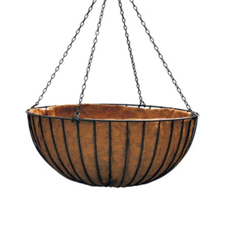Border Concepts Liberty Hanging Basket with Liner