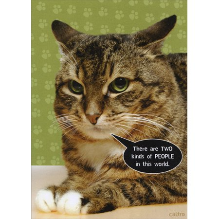Recycled Paper Greetings Two Kinds of People Cat Just For Laughs Funny Greeting Card for $<!---->