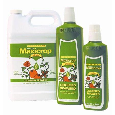 MaxiCrop Soluble Powder Natural Growth Stimulant