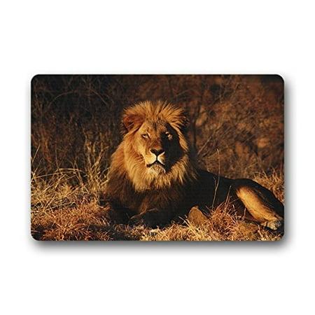 WinHome Lion animal Doormat Floor Mats Rugs Outdoors/Indoor Doormat Size 30x18 inches
