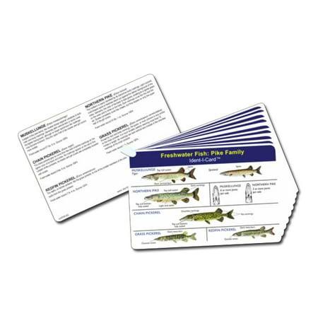 Fish Ident I Cards Set