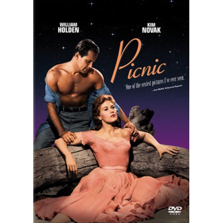 Picnic (DVD) (Rosalind Krauss Sculpture In The Expanded Field)