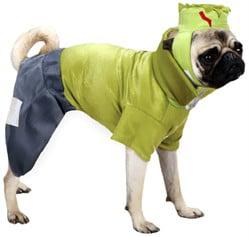Casual Canine Frankenhound Costume Green, L