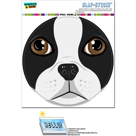 - Boston Terrier Face - Close up Pet Dog Circle SLAP-STICKZ(TM) Premium Sticker