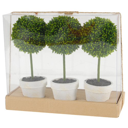 Charlton Home Floor Boxwood Topiary in Pot (Set of 3)
