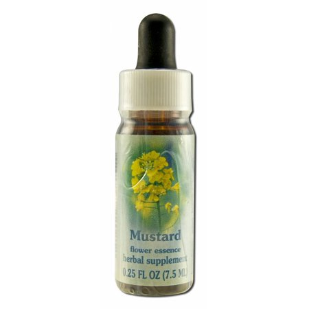 Flower Essence Services (FES) - Flower Essence,  Mustard, 0.25 -