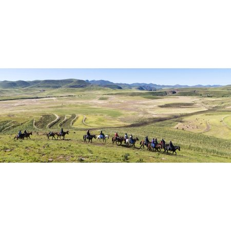 Group of horsemen riding across the fields Lesotho Highlands Semonkong Lesotho Canvas Art - Panoramic Images (27 x 9)