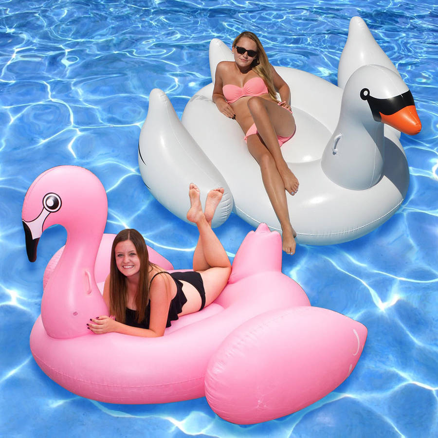 Jumbo and Giant Bird Floats for Swimming Pools, Pack of 2