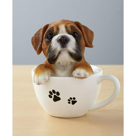 Teacup Pups - Boxer, Brings their personality to life By The Lakeside