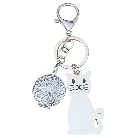 AM Landen Cat with Mini Frame Keychain Key Chains for Best Friends Key Chains Best Gift Keychains (Cat with mini picture frame) (China Photos)